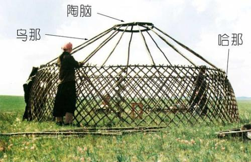 蒙古包哈那的三个神奇的特性