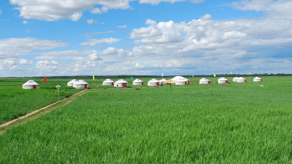 青青草原上的白毡房——蒙古包