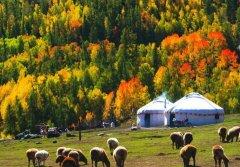 传统蒙古包基本结构